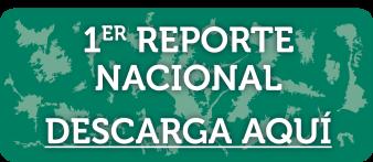 descarga_informe